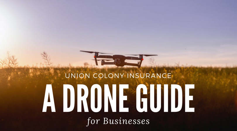A Drone Guide for Businesses